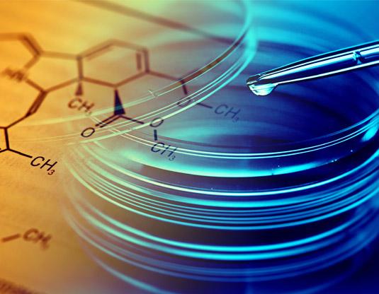 productos quimicos raval